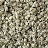 Carpet Cleaning Greenwood IN