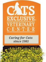 Cats Exclusive Veterinary Center: Vaughan Faythe DVM